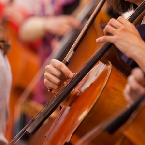 Support your child's music tuition: 7 things you need to know…